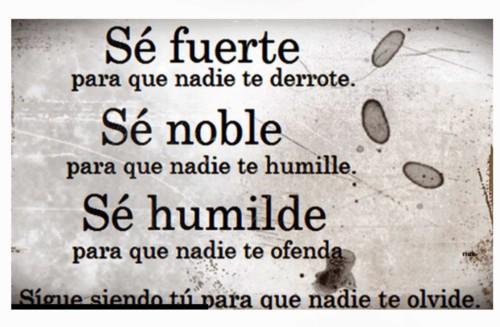 Frases de la Vida Cortas para Reflexionar MUY BONITAS!!