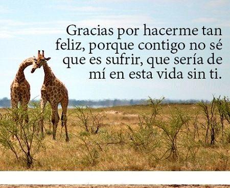 Imagenes Bonitas Con Frases Para Decir Gracias