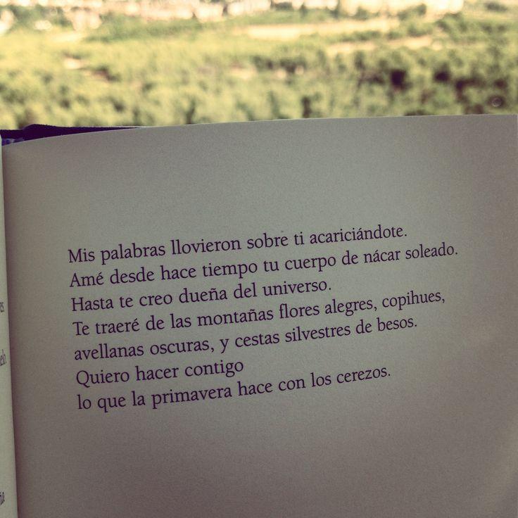 Versos Cortos De Amor Muy Románticos Para Enamorar